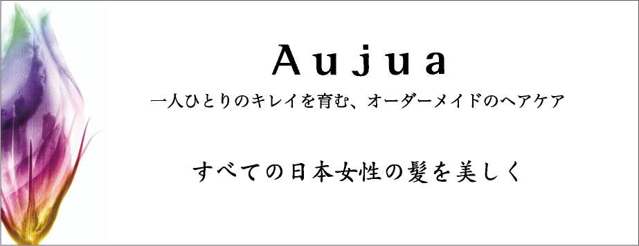 Aujuaシリーズバージョンアップ